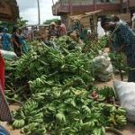 PLACES: The Agriculturally Rich Town Of Iwo, Osun