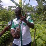 Tree Planting Not A Political Affair In Osun – Ilori