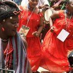 Despite Ebola Scare, OsunOsogbo 2014 Records Success