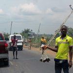 Dodo Ikire And Its Economic Value